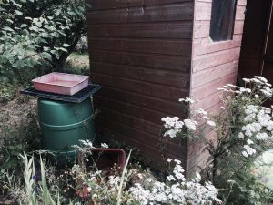 Allotment shed water butt