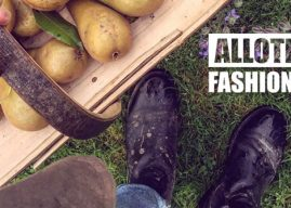 #AllotmentFashionWeek Day THREE – Sensible Styling
