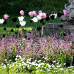 Swiss Garden Shuttleworth