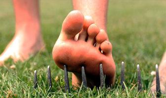 Are you a safe gardener? Beware unexpected garden injuries!