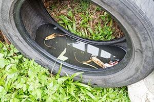 tyre leaching