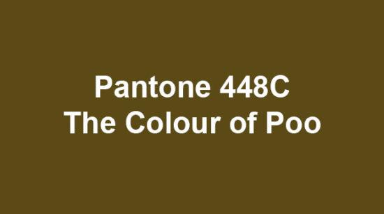 Pantone 448C - poo