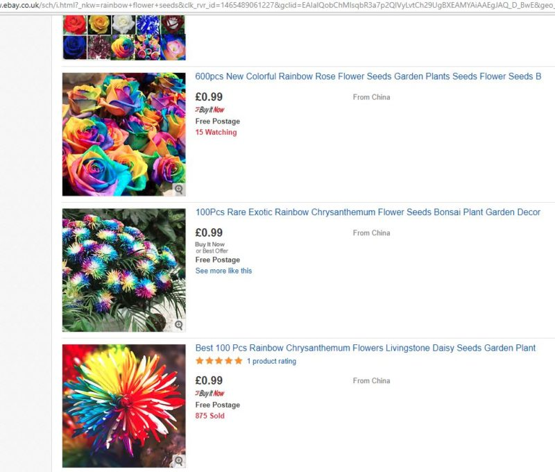 The fake flowers that pay eBay