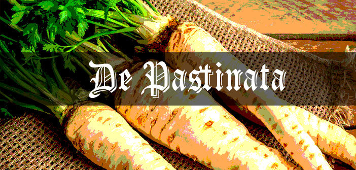 Parsnips - Medieval Grow Your Own