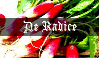 Radishes: Medieval Grow Your Own