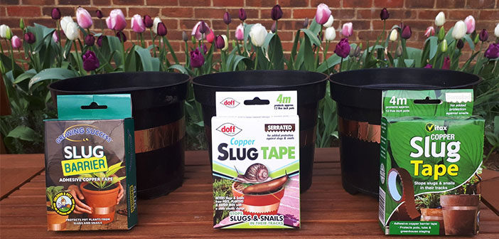 Does copper tape stop slugs and snails? It depends…