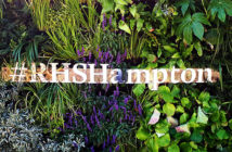 Hampton Court Flower Show 2018