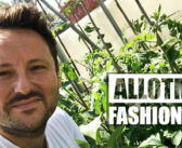#AllotmentFashionWeek Day FOUR – Trousers Off, Hats on.